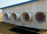 Common animal husbandry fan, classification of negative pressure fan